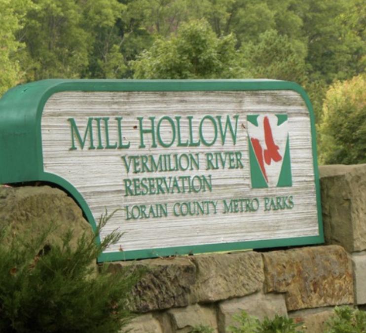 Mill Hollow Summer Concert Series